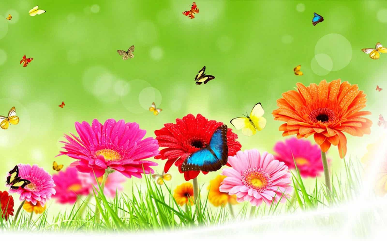 Floral&Butterflies